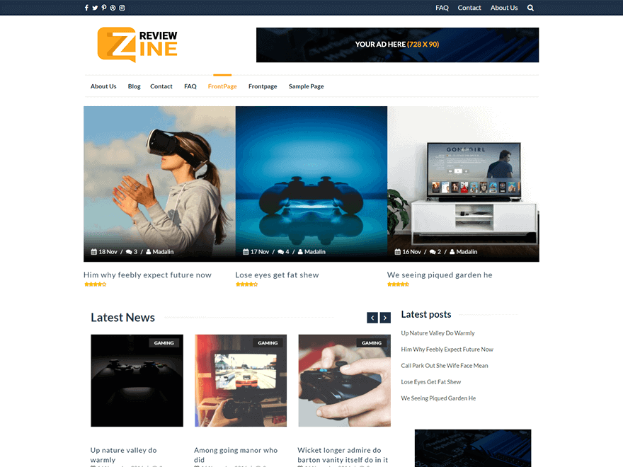 ReviewZine-Theme
